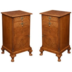 Pair of Queen Ann Style Bedside Cabinets