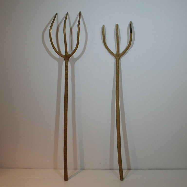 Set of two great Folk Art objects. The small trees which were used to make these forks were on purpose grown this way. Very rare and decorative objects, 