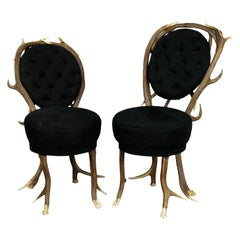 Pair of Rare Antler Parlor Chairs, French, circa 1860