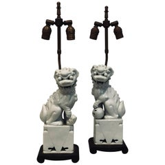 Pair of Rare Decorative Porcelain Foo Dogs Table Lamps
