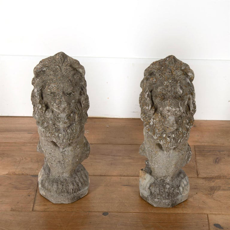 A diminutive pair of reconstituted stone lions of good worn colour and with lichen.