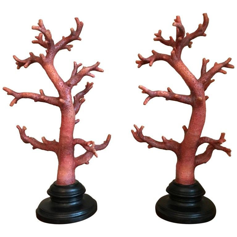 Pair of Red Coral Decorations, Large-Scale For Sale