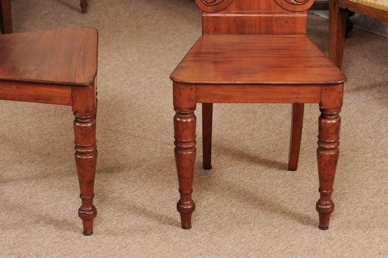 Pair of Regency English Mahogany Hall Chairs, circa 1810 For Sale 1