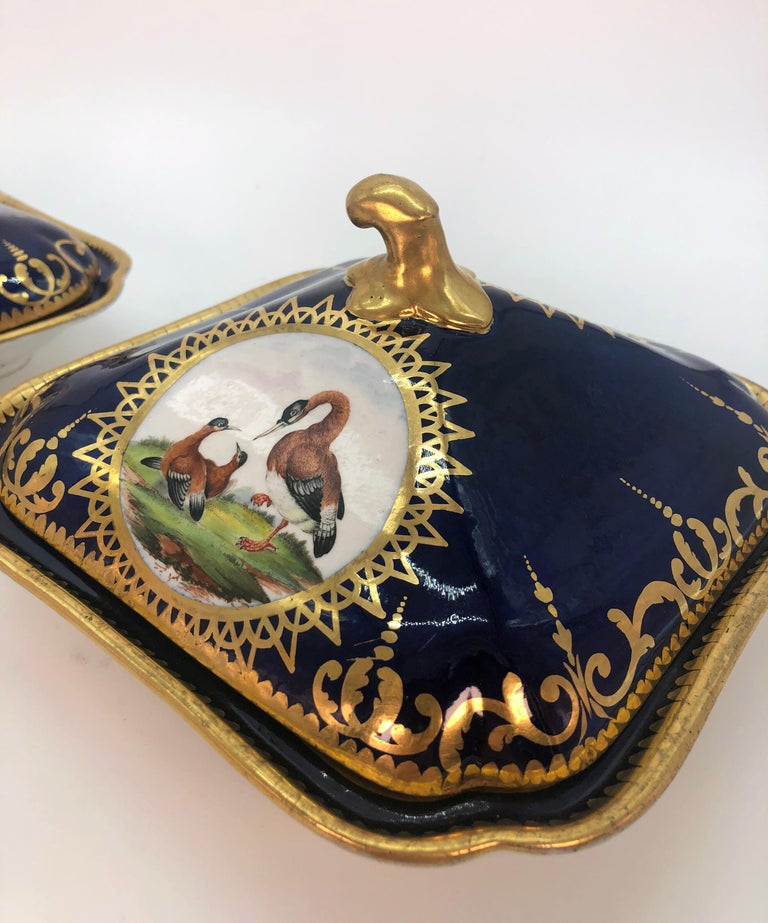 Pair of Regency Hand Painted Porcelain Covered Dishes by Coalport, circa 1805 In Good Condition For Sale In London, GB