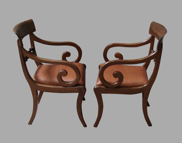 A pair of good scale Regency mahogany armchairs with scroll arms and drop in leather seats supported on saber legs, circa 1825.