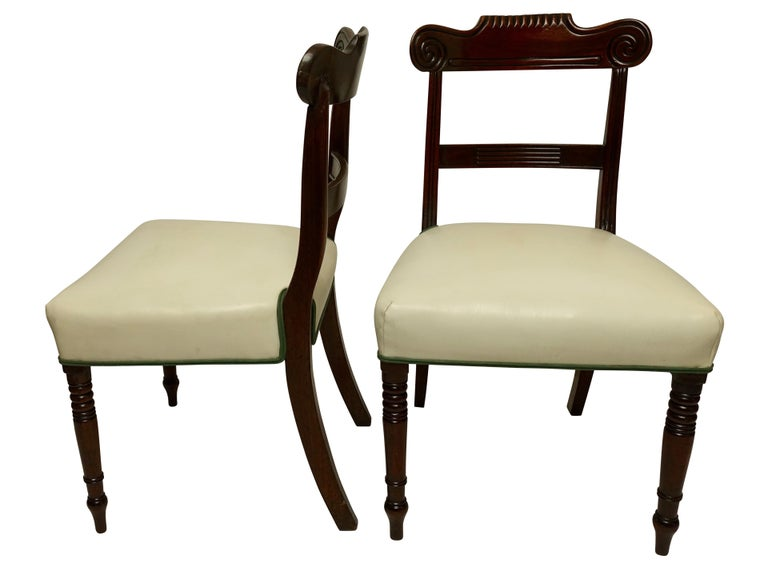 Pair of Regency mahogany dining chairs with curved crest rail carved with swirl scroll and gadrooned edged centre, with reeded supports and turned front legs and saber style back legs. Upholstered with white leather trimmed in a green cotton welt,
