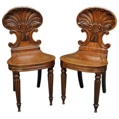 Pair of Regency Period Shell Back Hall Chairs