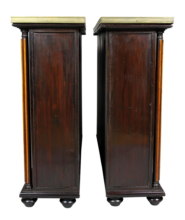 Pair of Regency Rosewood and Satinwood Cabinets / Credenzas For Sale 5