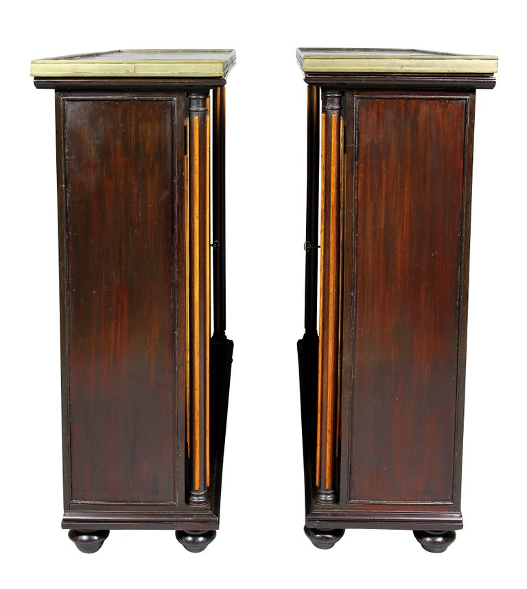 Pair of Regency Rosewood and Satinwood Cabinets / Credenzas For Sale 4