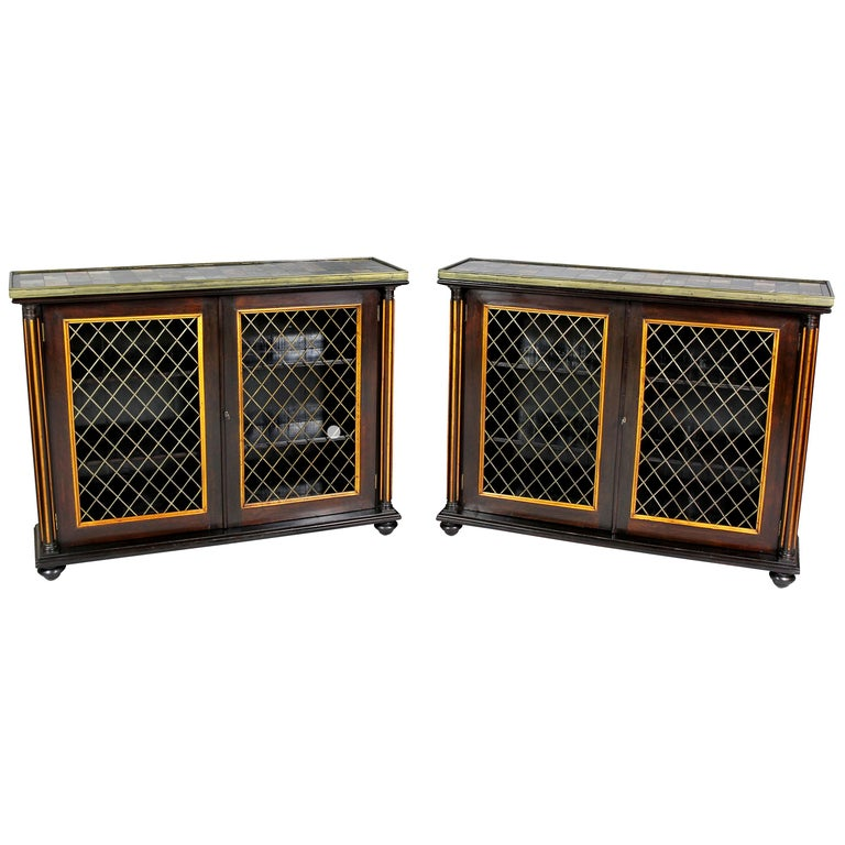 Pair of Regency Rosewood and Satinwood Cabinets / Credenzas For Sale