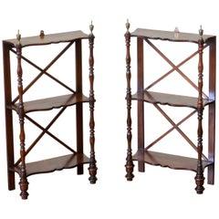 Pair of Regency Rosewood Wall Shelves