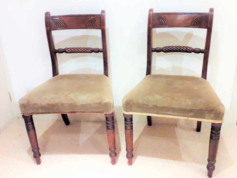 Pair of Regency side chairs in mahogany with original soft patination, the carved back and rope twist rails giving extra fine London made detailing, the back legs in out swept style with the fronts legs being ring turned, all in the true Regency