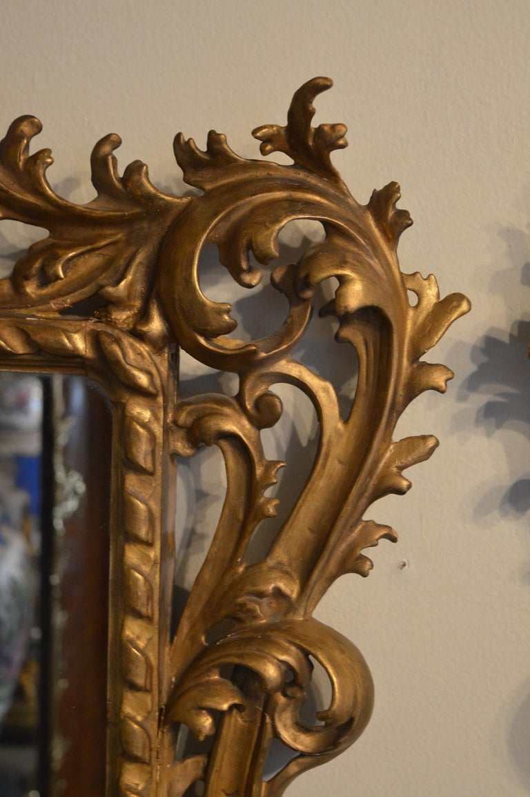 Pair of transitional Rococo classical hand carved giltwood mirrors.