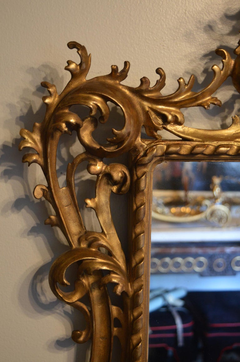 19th Century Pair of Rococo Classical Giltwood Mirrors For Sale