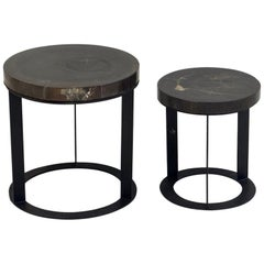 Pair of Round Petrified Wood Side Tables on Black Metal Base