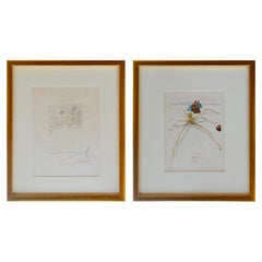 Pair of Salvador Dali Two Etchings on Papers