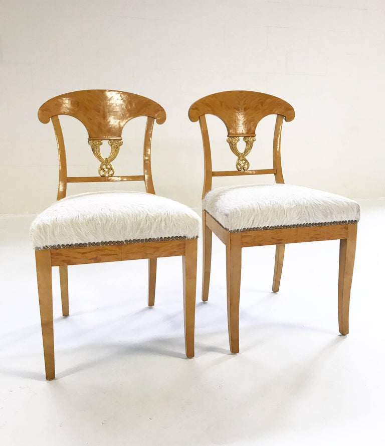 Early 19th Century Pair of Satin Birch Biedermeier Chairs in Ivory Brazilian Cowhide, circa 1820 For Sale