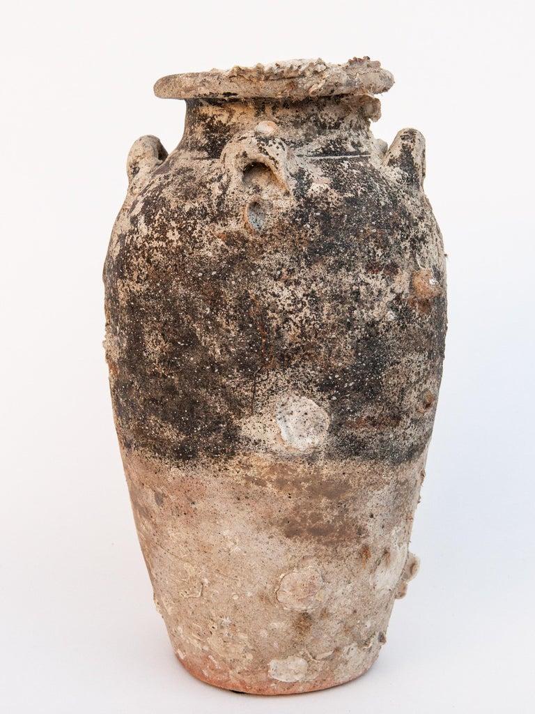 Pair of Sawankhalok Jars with Encrustations, Sawankhalok, Thailand, 15th Century For Sale 5