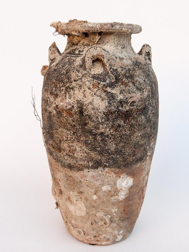Pair of Sawankhalok Jars with Encrustations, Sawankhalok, Thailand, 15th Century For Sale 7