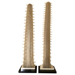 Pair of Sawfish Bill Rostrums