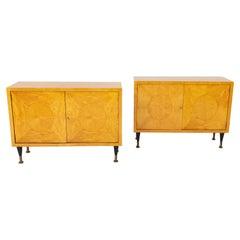 Pair of Scandinavian Mid-Century Two Door Low Cabinets