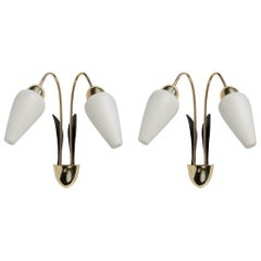 Pair of Sconces, Flower Buds by Maison Lunel, 1950
