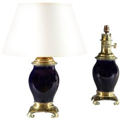 Pair of Sèvres Porcelain Lamps