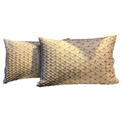 Pair of Silk Cushions Color Oyster Fish Scale Pattern with Silver Beading