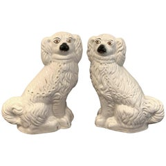 Pair of Staffordshire Dogs, in White
