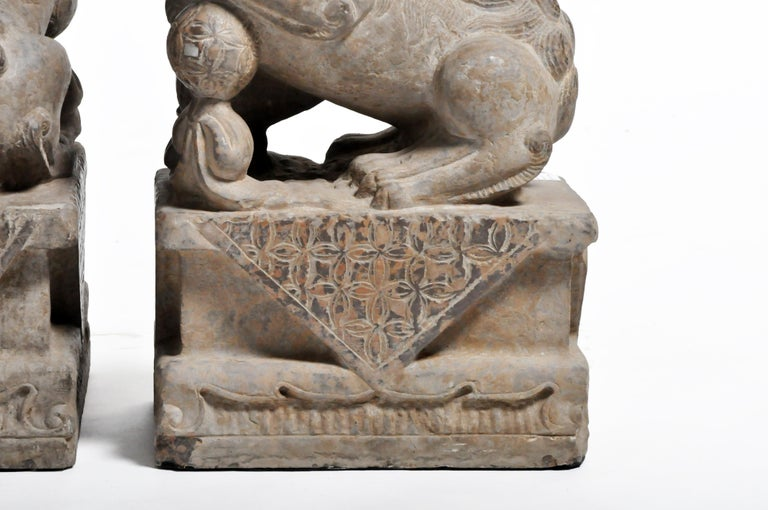 Pair of Stone Carved Fu Dogs on Pedestal For Sale 15