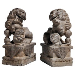 Pair of Stone Carved Fu Dogs on Pedestal