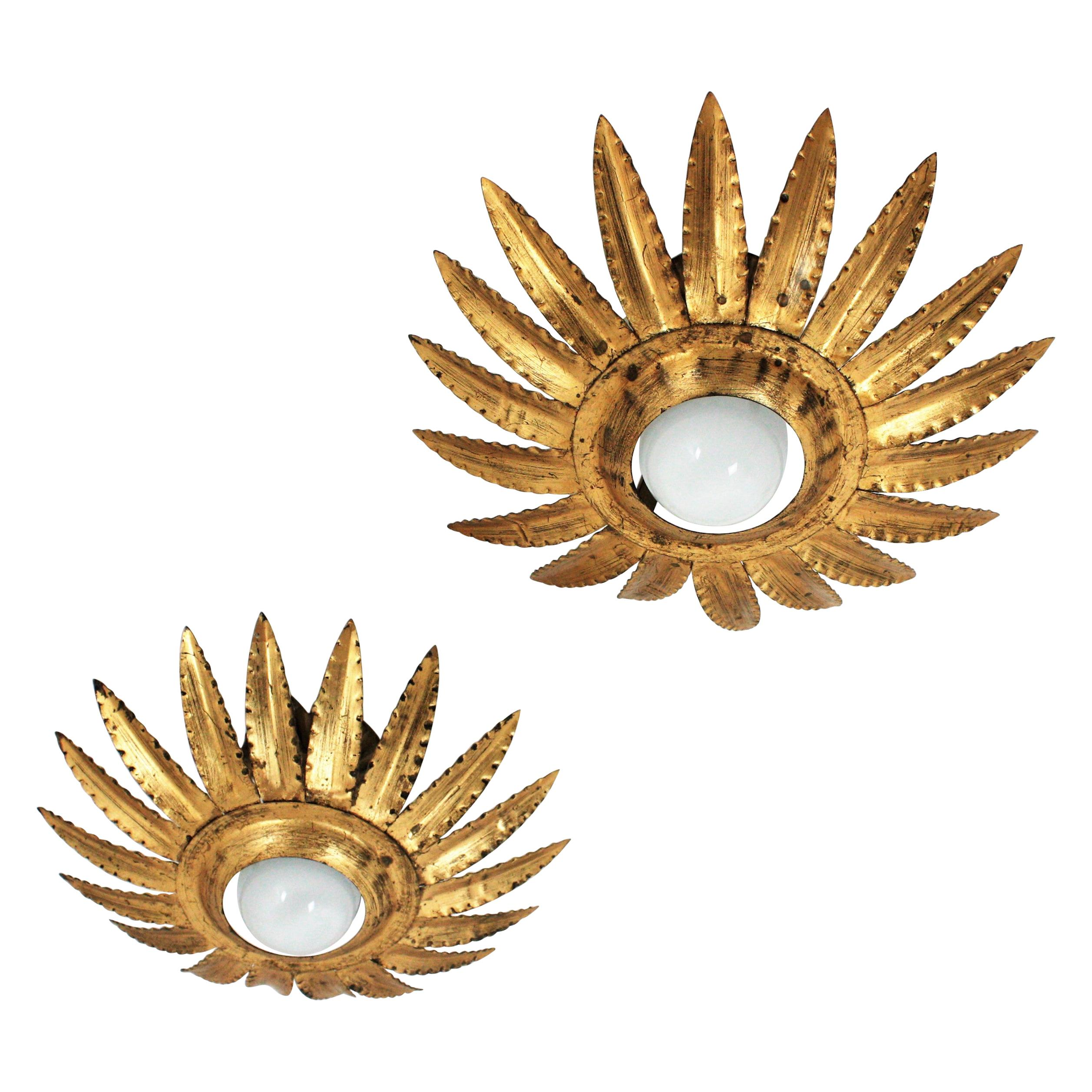 Pair of Sunburst Flower Light Fixtures or Pendants in Gilt Metal