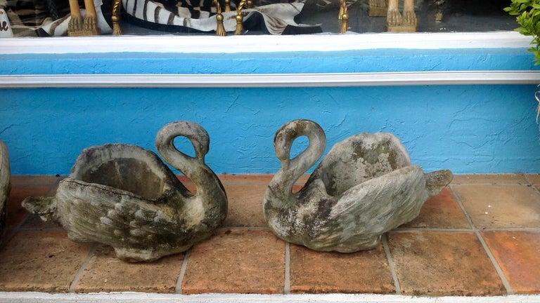 Concrete Pair of Swan Motif Planters For Sale