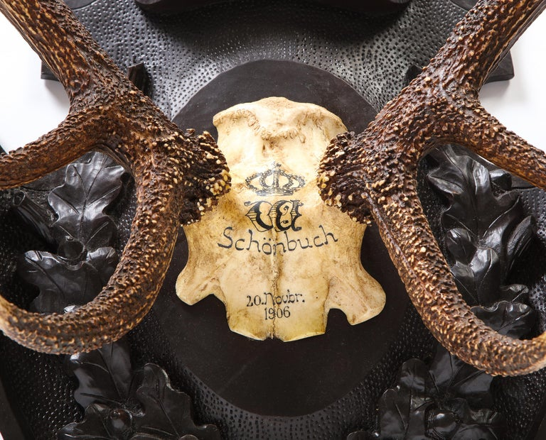 Pair of Swiss 'Black Forest' Antler Carved Trophy Mounts, Dated 1906 and 1906 For Sale 7