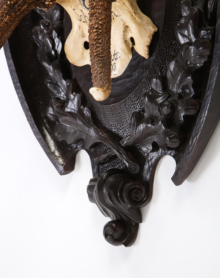 Pair of Swiss 'Black Forest' Antler Carved Trophy Mounts, Dated 1906 and 1906 For Sale 3