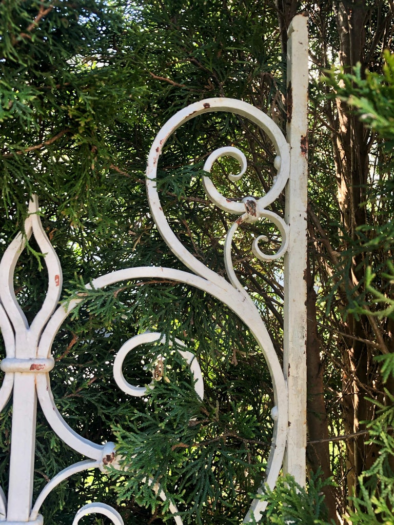 Pair of Tall 19th Century French Wrought Iron Gates In Good Condition For Sale In Woodbury, CT