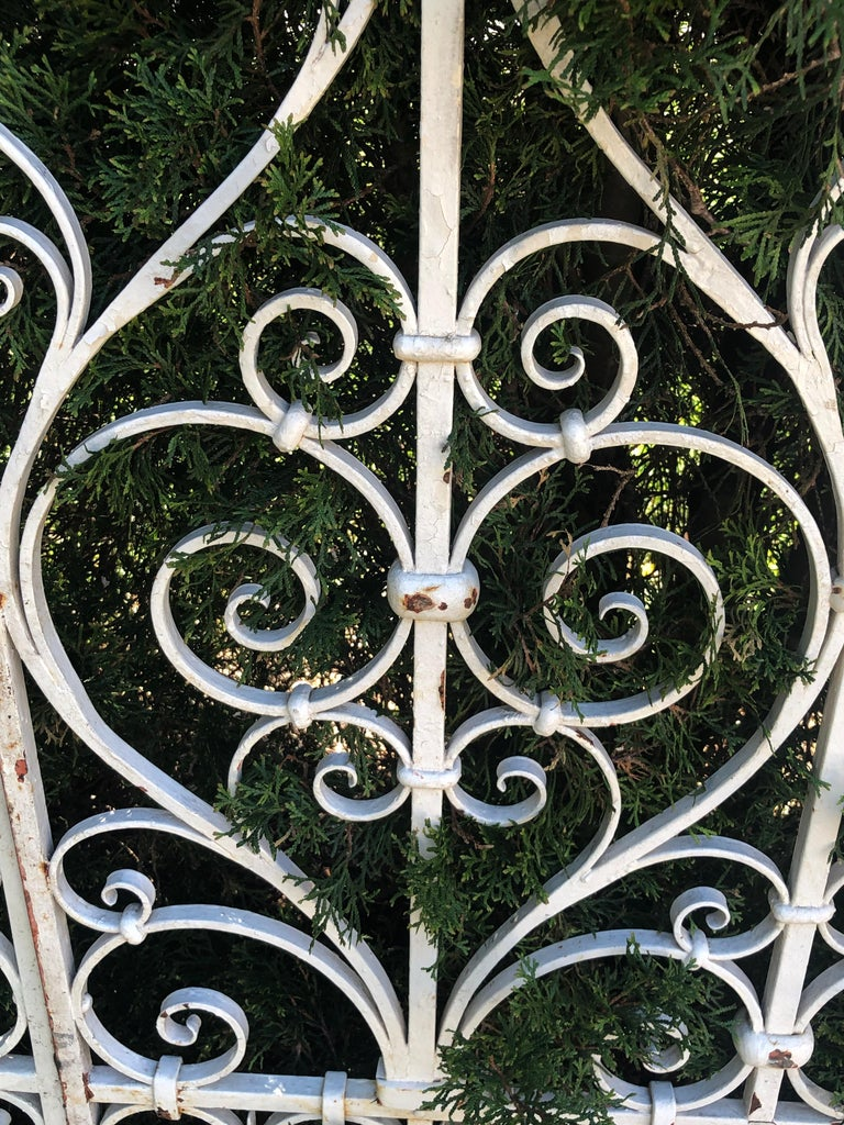 Pair of Tall 19th Century French Wrought Iron Gates For Sale 1