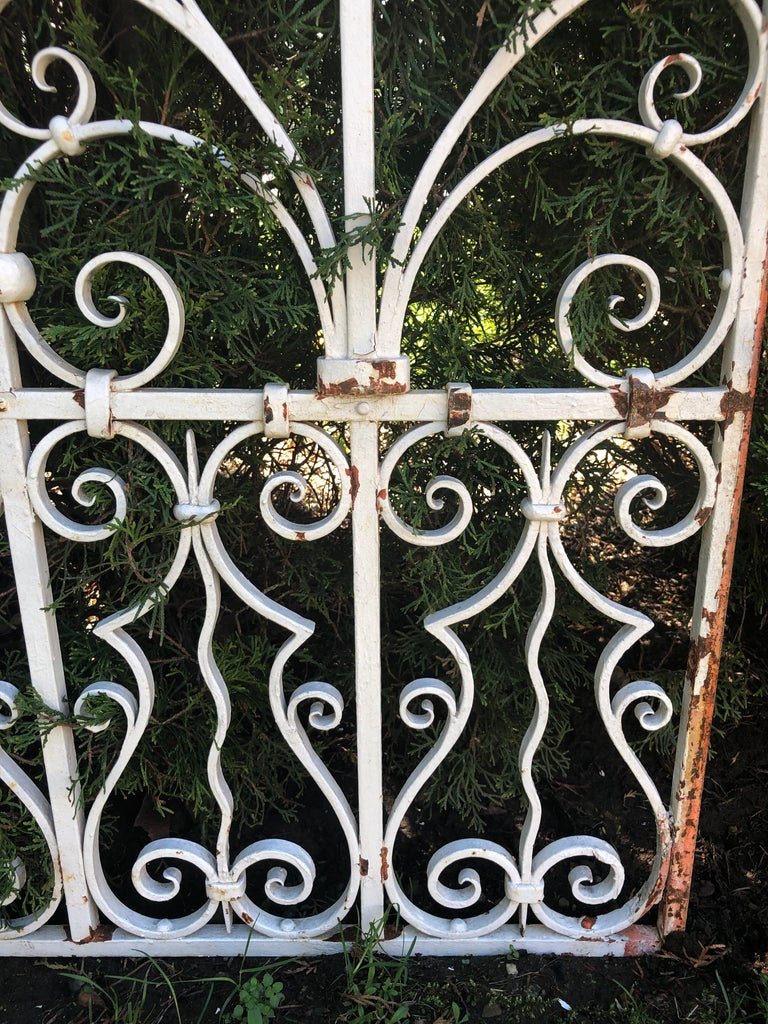 Pair of Tall 19th Century French Wrought Iron Gates For Sale 4