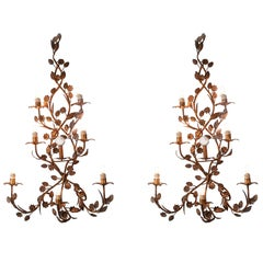 Pair of Tall Italian Sconces 20th Century Seven-Light Wrought Iron Wall Lights