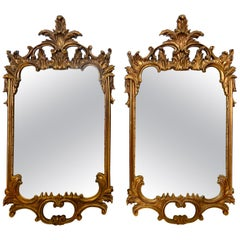 Pair of Tall Matching Carved Baroque Style Giltwood Mirrors