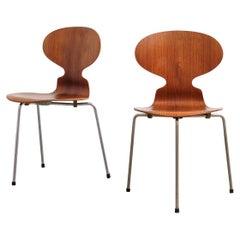 Pair of Teak Ant Chairs 3100 Arne Jacobsen for Fritz Hansen, 1960s