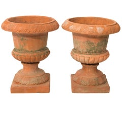 Pair of Terracotta Garden Urns