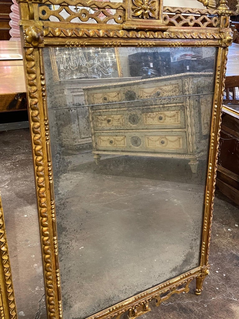 Pair of the 19th Century Giltwood Mirrors For Sale 2
