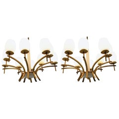 Pair of Unique Midcentury Large Brass Chandeliers, 1960