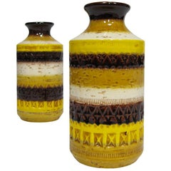 Pair of Vases by Aldo Londi for Bitossi