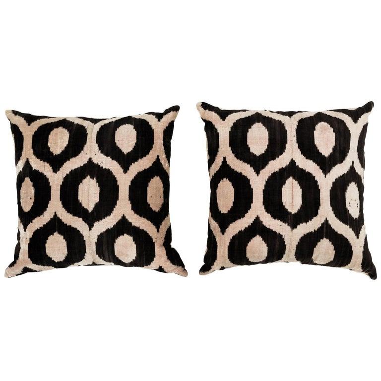 Pair of Velvet Throw Pillows For Sale