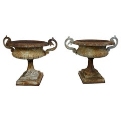 Pair of Victorian Cast Iron Urns