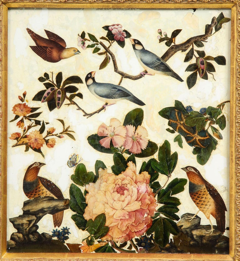 Early Victorian Pair of Victorian Verre Églomisé Paintings of Birds For Sale