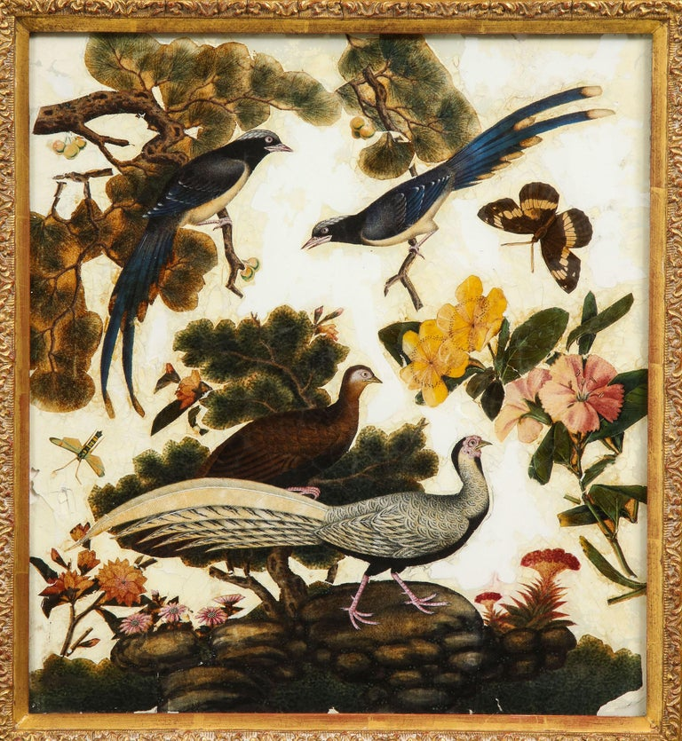 19th Century Pair of Victorian Verre Églomisé Paintings of Birds For Sale