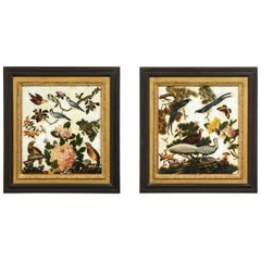 Pair of Victorian Verre Églomisé Paintings of Birds